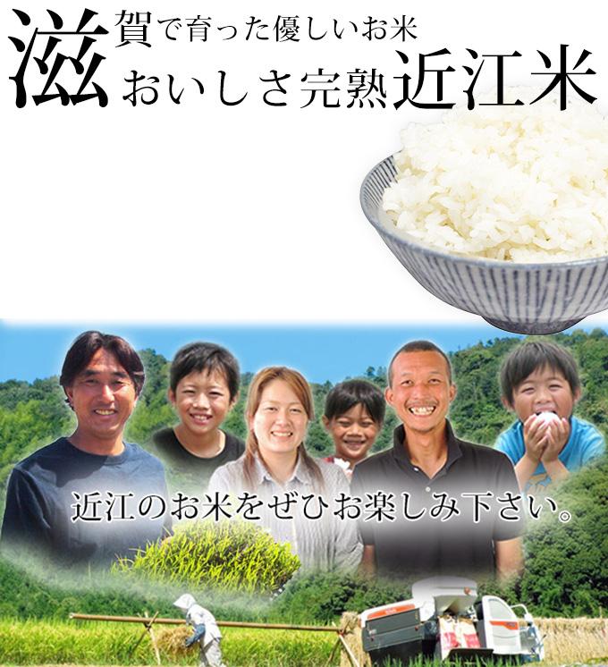 滋賀で育ったやさしいお米