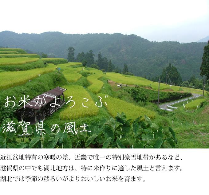 お米が喜ぶ滋賀の風土