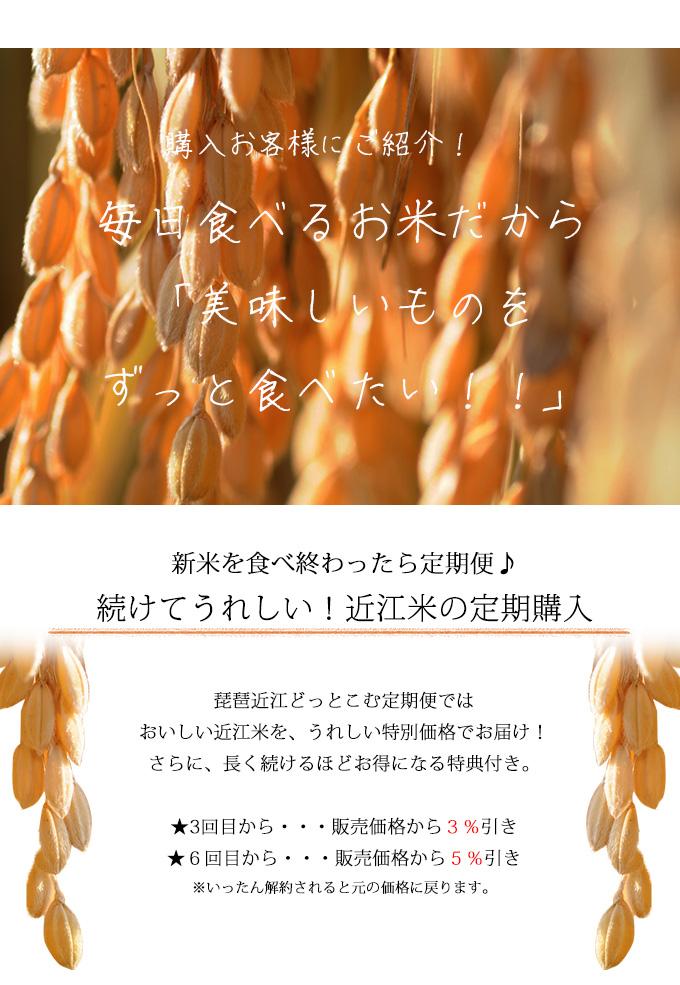 美味しいお米を毎日食べたい!お得な定期購入