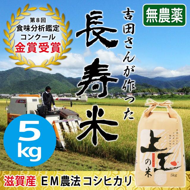 近江米 長寿米